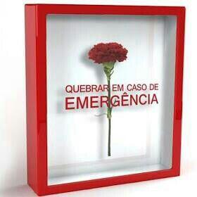Clavel-Emergencia